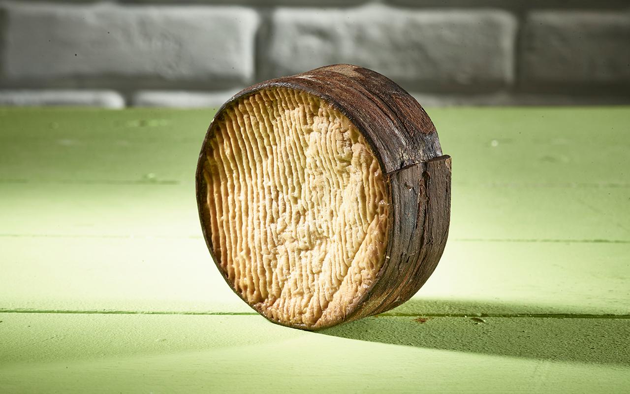 Pong Cheese Humming Bark