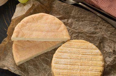 Picnic Cheese